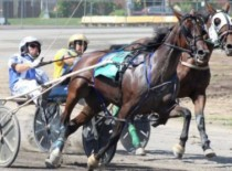 For Harness Racer Chris Shaw, 1,000 is a Very Big Number